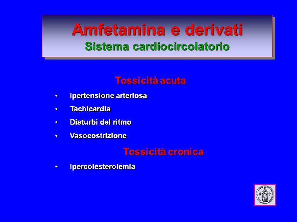 Amfetamina e derivati Sistema cardiocircolatorio