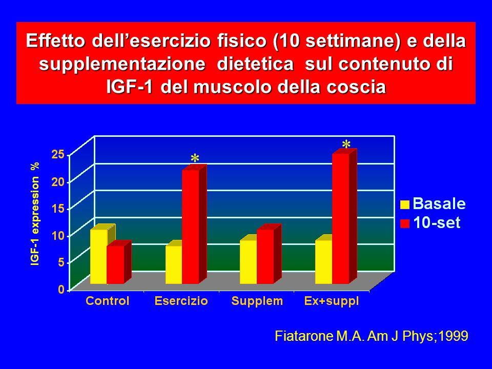Effetto dell'esercizio fisico (10 settimane) e della supplementazione dietetica sul contenuto di IGF-1 del muscolo della coscia
