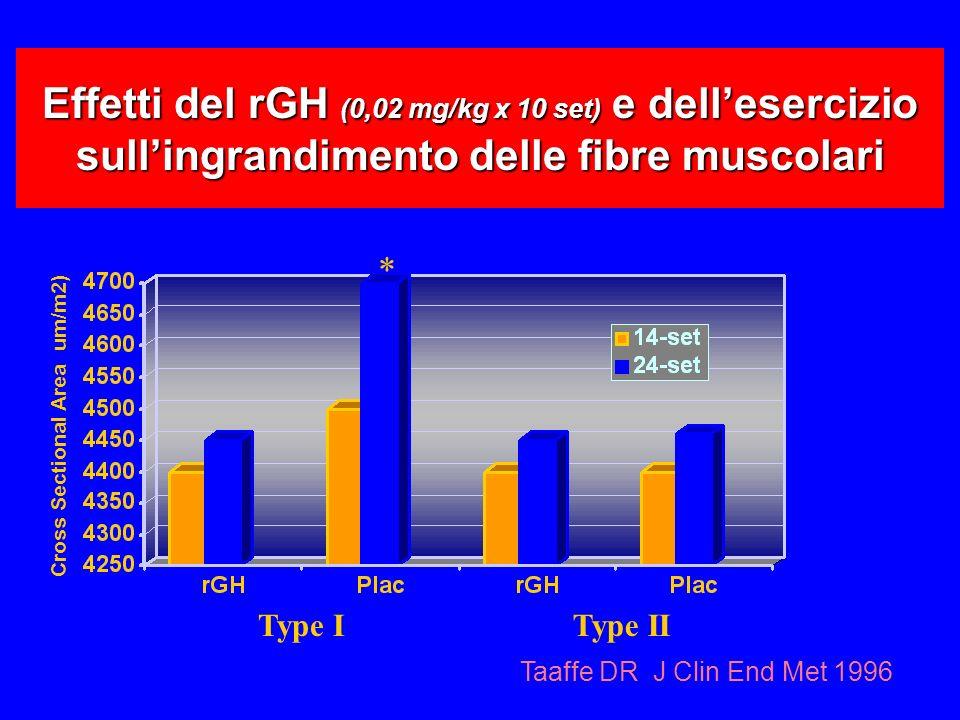 Effetti del rGH (0,02 mg/kg x 10 set) e dell'esercizio sull'ingrandimento delle fibre muscolari