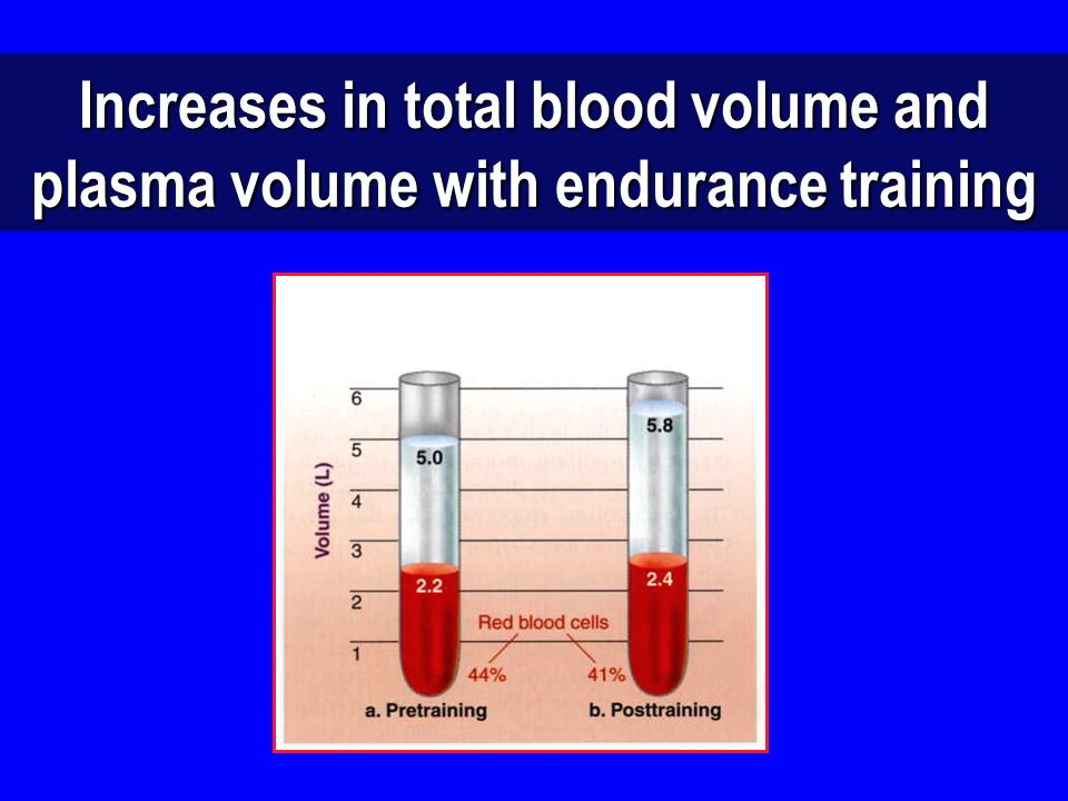 Increases in total blood volume and plasma volume with endurance training