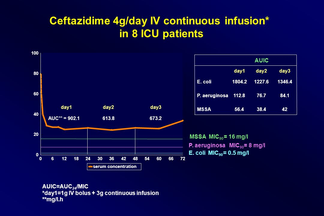 Ceftazidime 4g/day IV continuous infusion* in 8 ICU patients