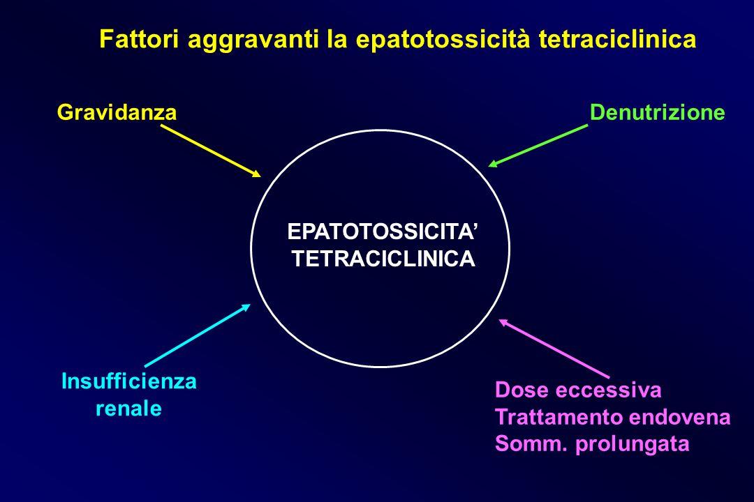 Fattori aggravanti la epatotossicità tetraciclinica