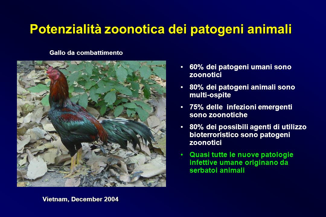 Potenzialità zoonotica dei patogeni animali