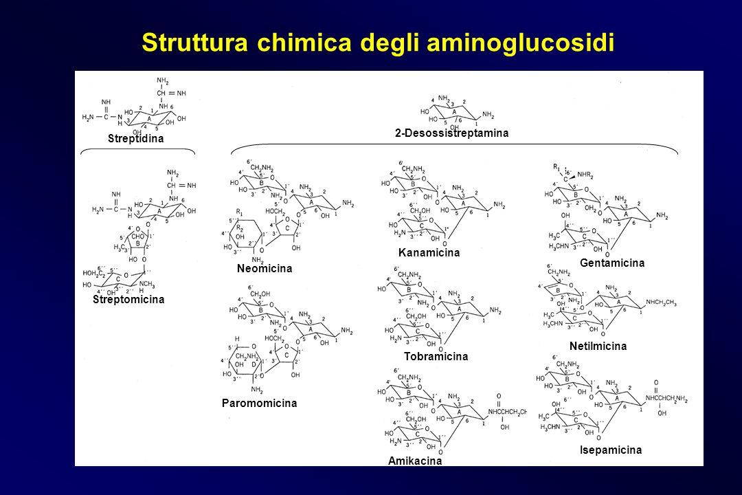 Struttura chimica degli aminoglucosidi