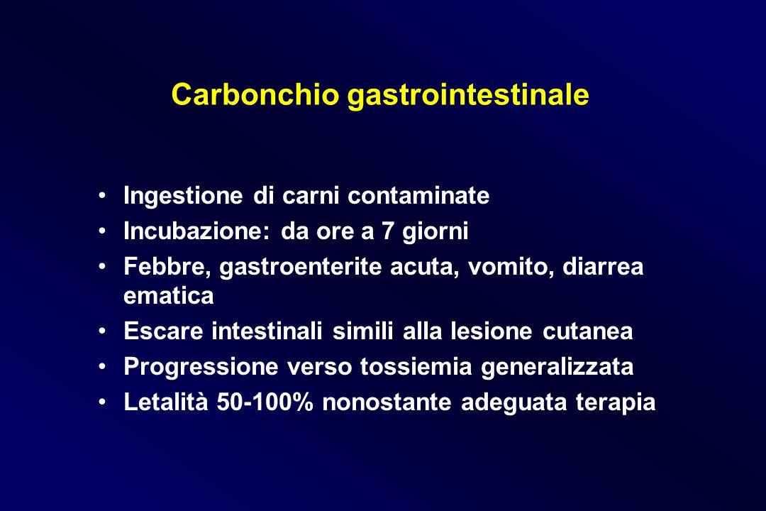 Carbonchio gastrointestinale