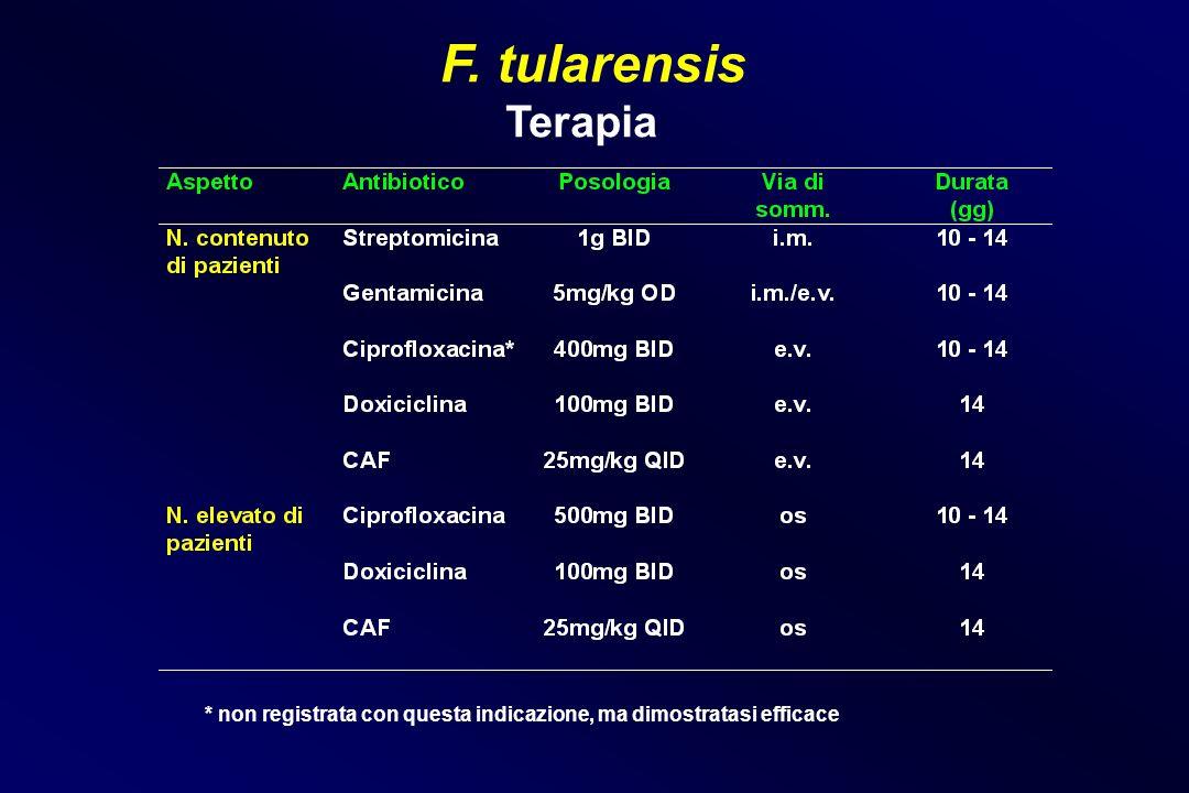 F. tularensis Terapia * non registrata con questa indicazione, ma dimostratasi efficace