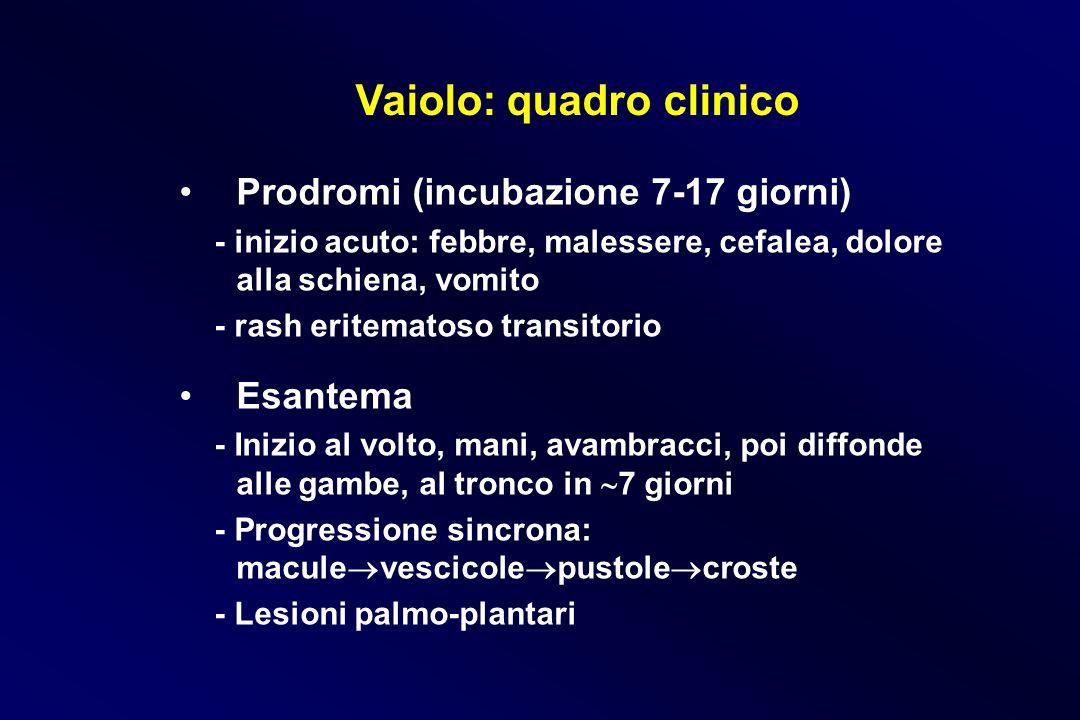 Vaiolo: quadro clinico