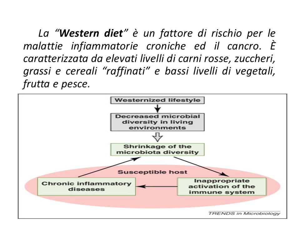 La Western diet è un fattore di rischio per le malattie infiammatorie croniche ed il cancro. È caratterizzata da elevati livelli di carni rosse, zuccheri, grassi e cereali raffinati e bassi livelli di vegetali, frutta e pesce.