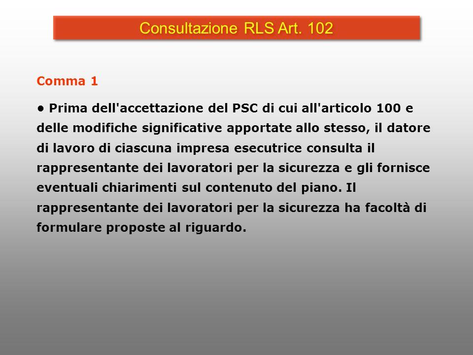 Consultazione RLS Art. 102 Comma 1