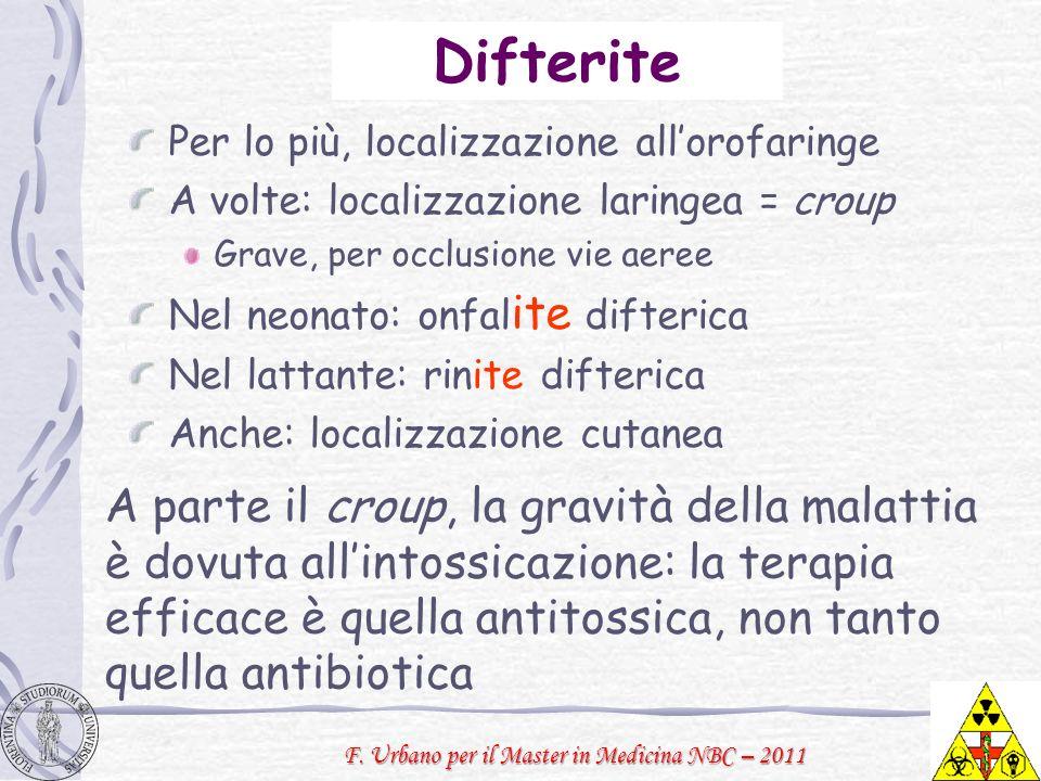 Difterite Per lo più, localizzazione all'orofaringe. A volte: localizzazione laringea = croup. Grave, per occlusione vie aeree.
