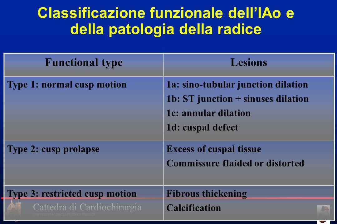 Classificazione funzionale dell'IAo e della patologia della radice