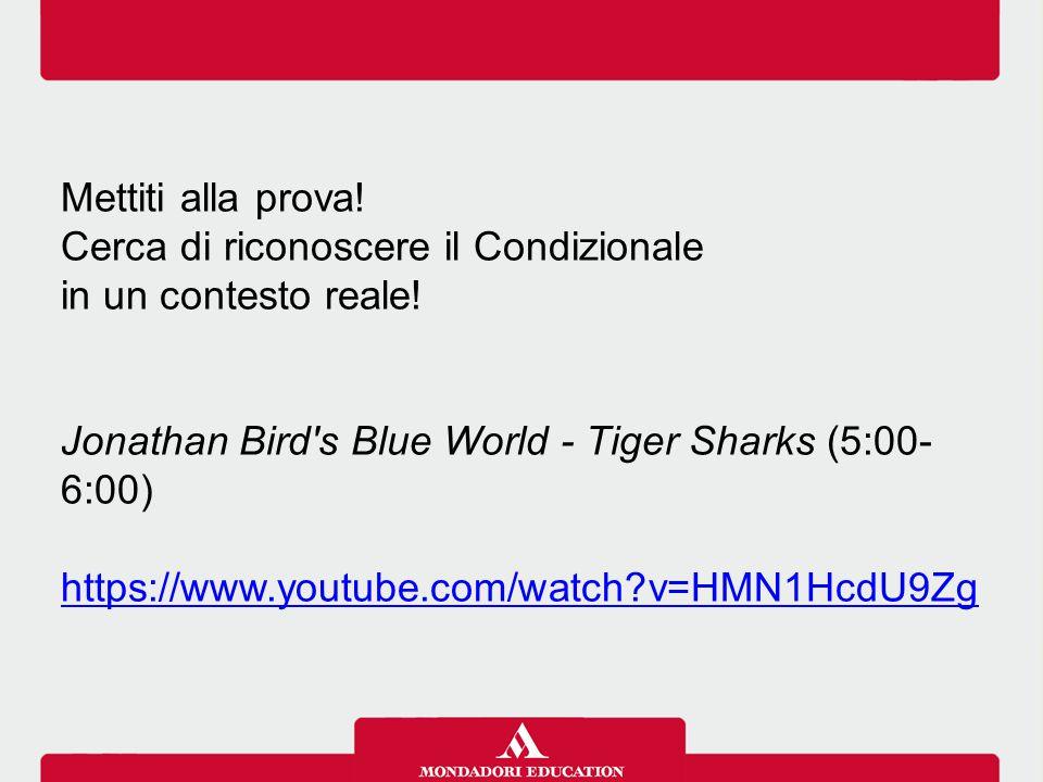 Mettiti alla prova! Cerca di riconoscere il Condizionale. in un contesto reale! Jonathan Bird s Blue World - Tiger Sharks (5:00-6:00)
