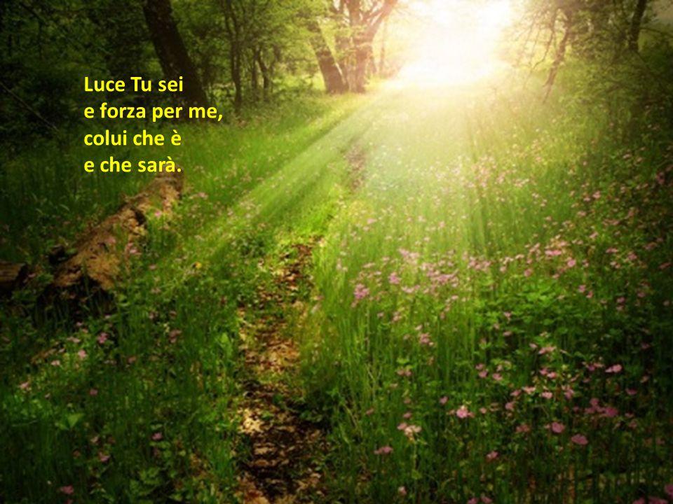 Luce Tu sei e forza per me, colui che è e che sarà.