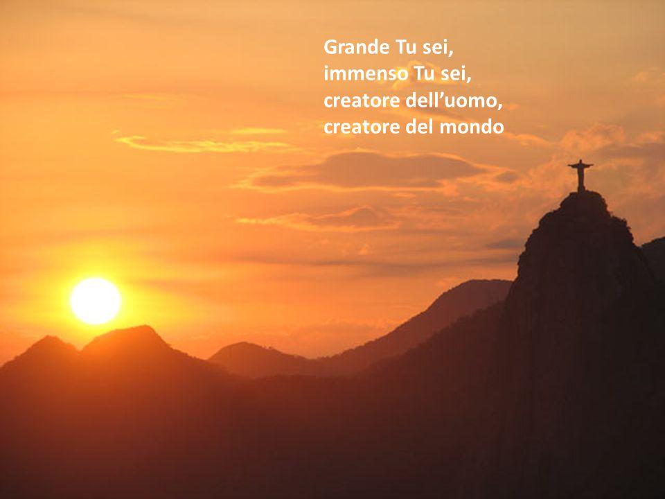 Grande Tu sei, immenso Tu sei, creatore dell'uomo, creatore del mondo