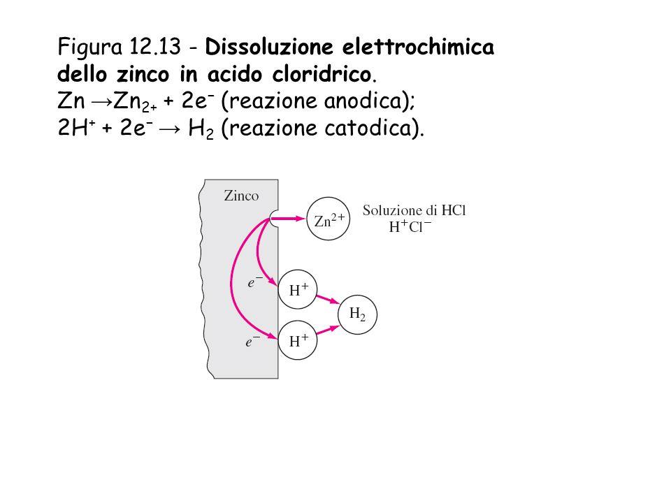 Figura 12.13 - Dissoluzione elettrochimica dello zinco in acido cloridrico.
