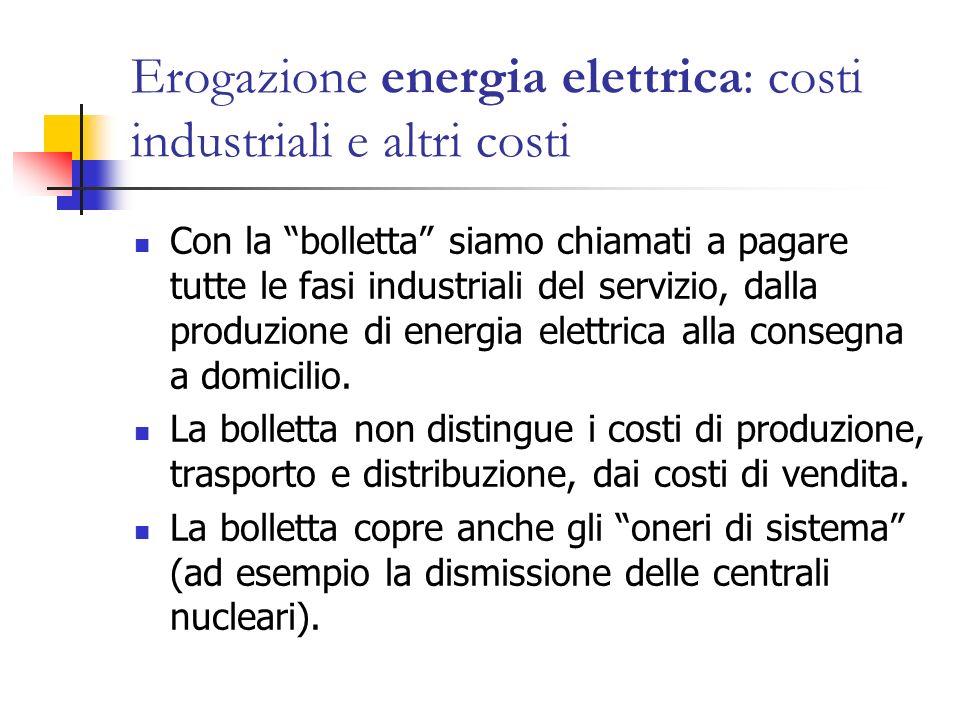 Erogazione energia elettrica: costi industriali e altri costi