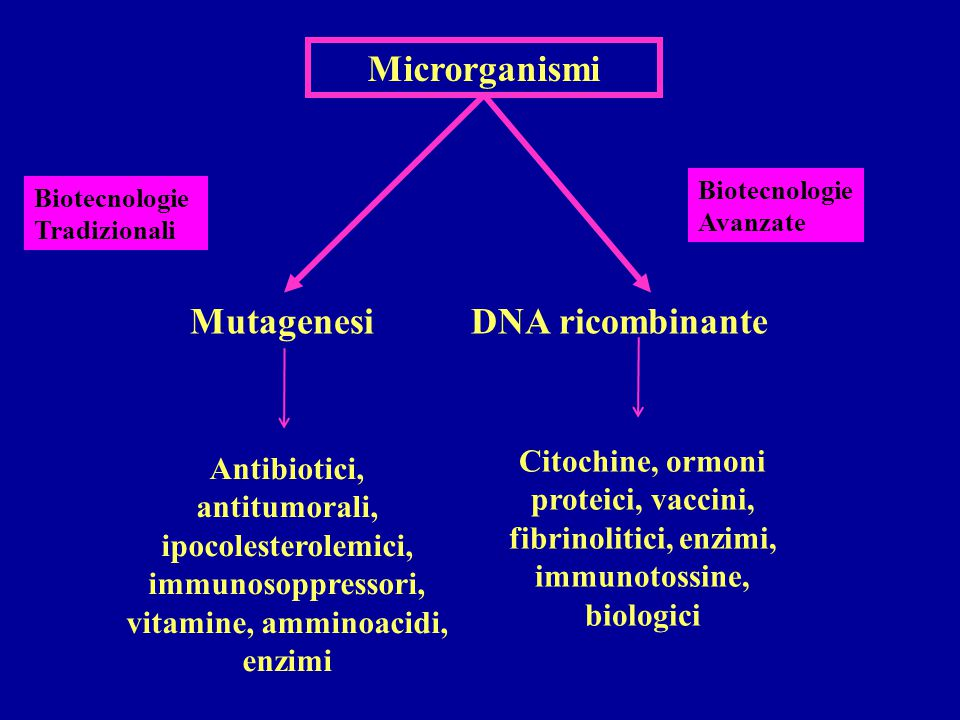 Microrganismi Mutagenesi DNA ricombinante