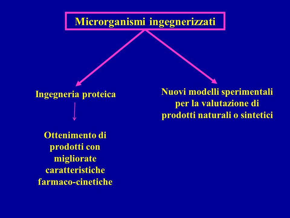 Microrganismi ingegnerizzati