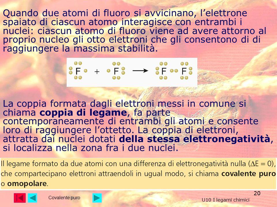 Quando due atomi di fluoro si avvicinano, l'elettrone spaiato di ciascun atomo interagisce con entrambi i nuclei: ciascun atomo di fluoro viene ad avere attorno al proprio nucleo gli otto elettroni che gli consentono di di raggiungere la massima stabilità.