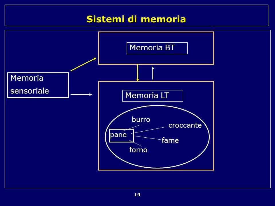 Memoria BT Memoria sensoriale Memoria LT burro croccante pane fame