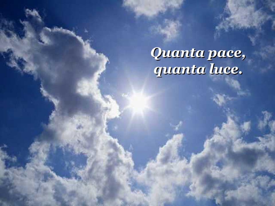 Quanta pace, quanta luce.