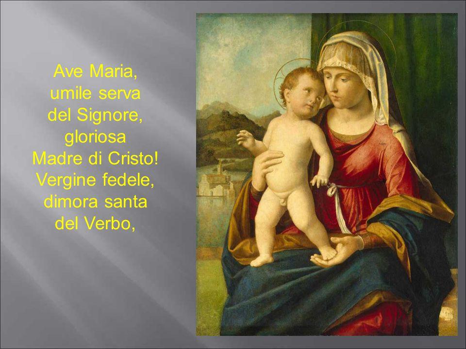 Madre di Cristo! Vergine fedele, dimora santa