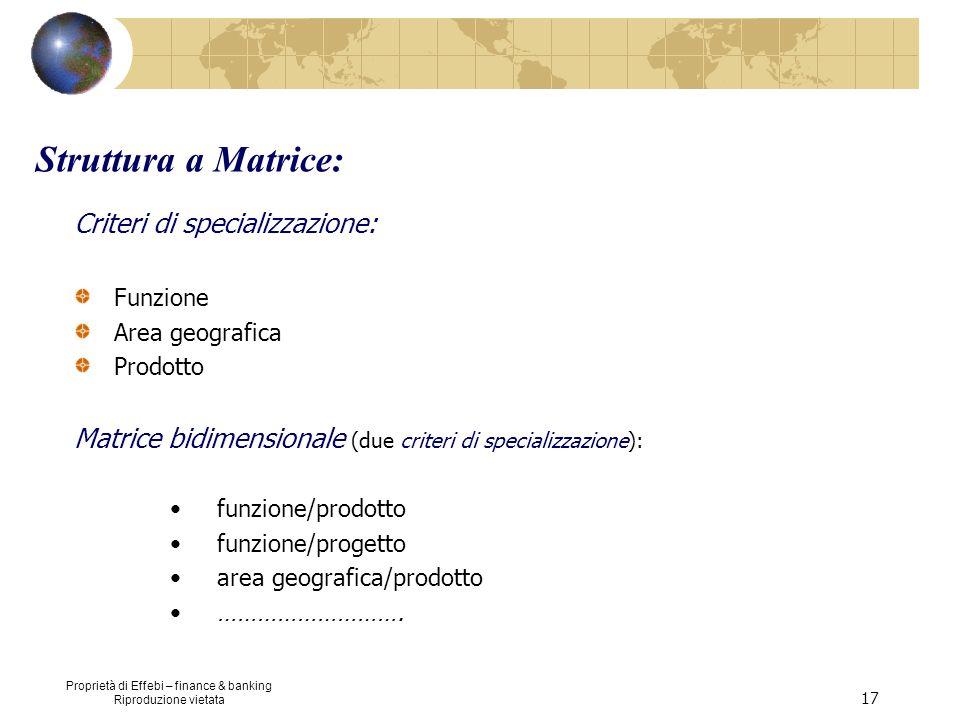 Struttura a Matrice: Criteri di specializzazione: