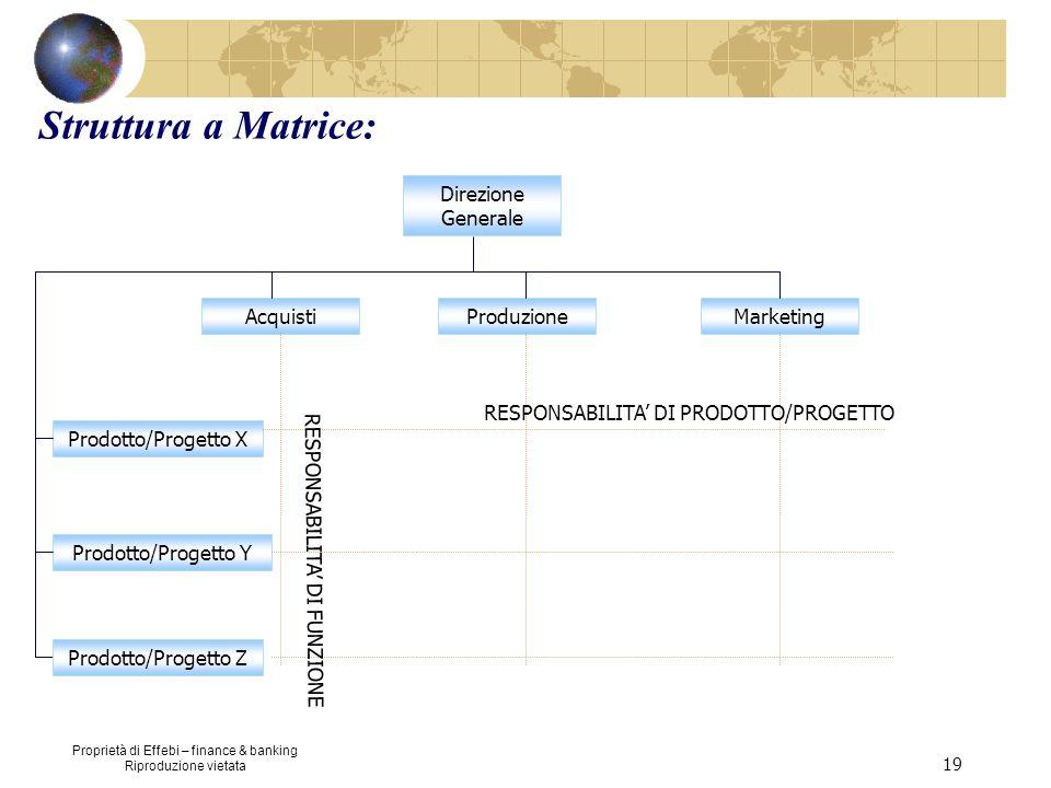 Struttura a Matrice: Direzione Generale Acquisti Produzione Marketing