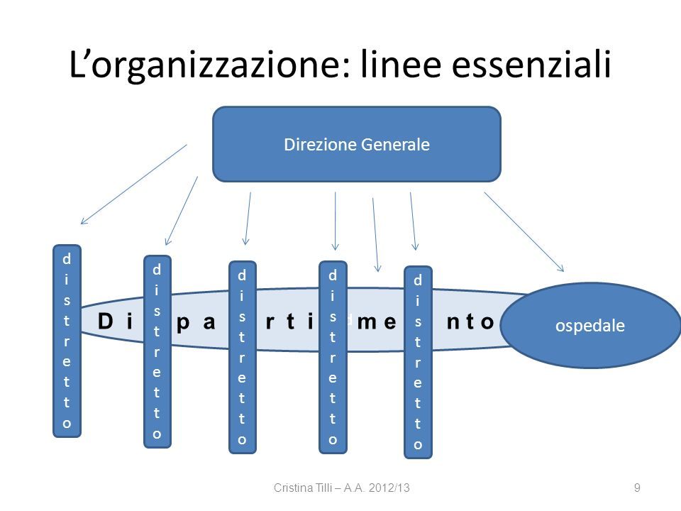 L'organizzazione: linee essenziali