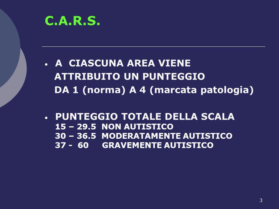 C.A.R.S. A CIASCUNA AREA VIENE ATTRIBUITO UN PUNTEGGIO