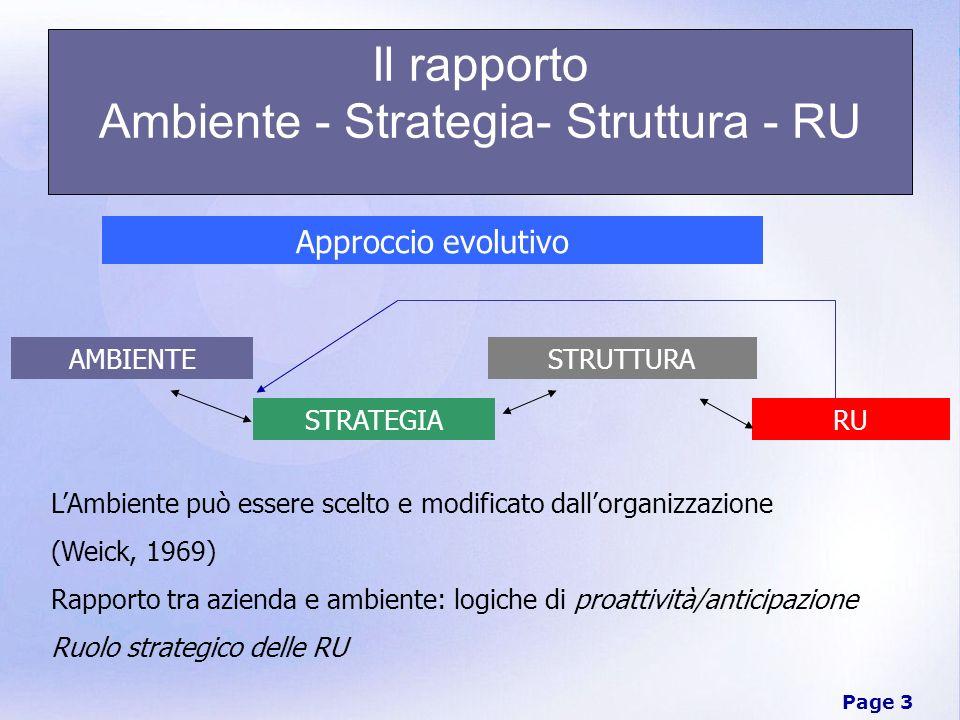 Il rapporto Ambiente - Strategia- Struttura - RU