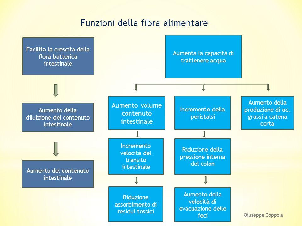 Funzioni della fibra alimentare