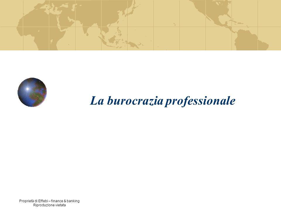 La burocrazia professionale