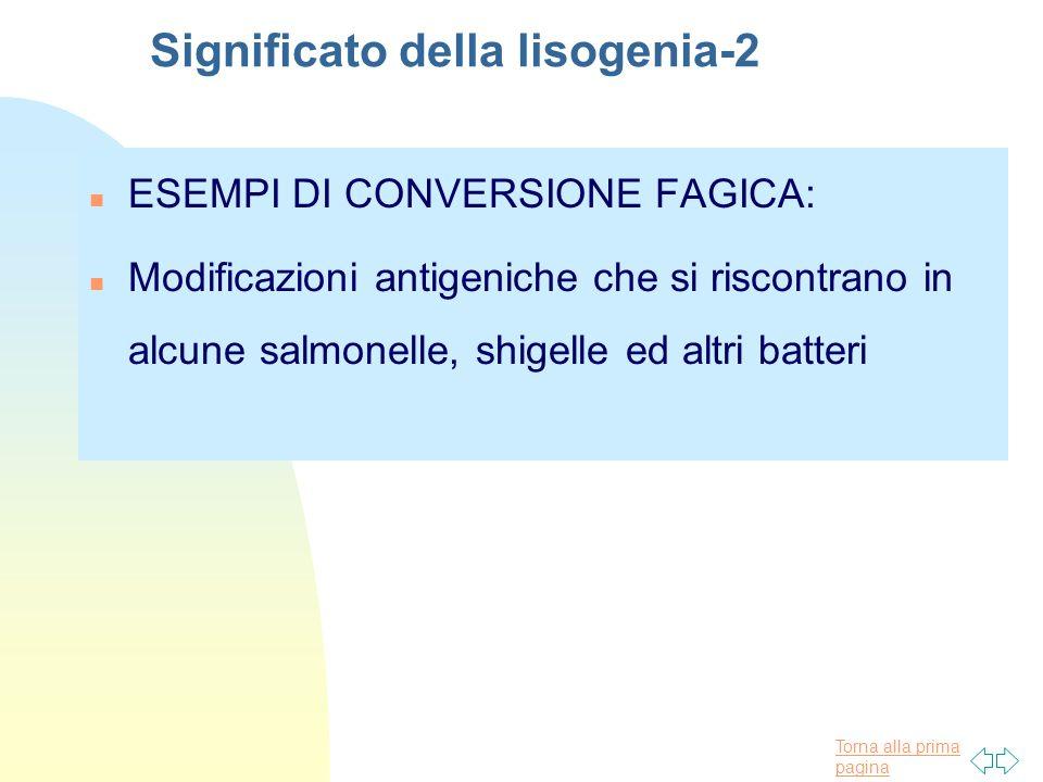 Significato della lisogenia-2