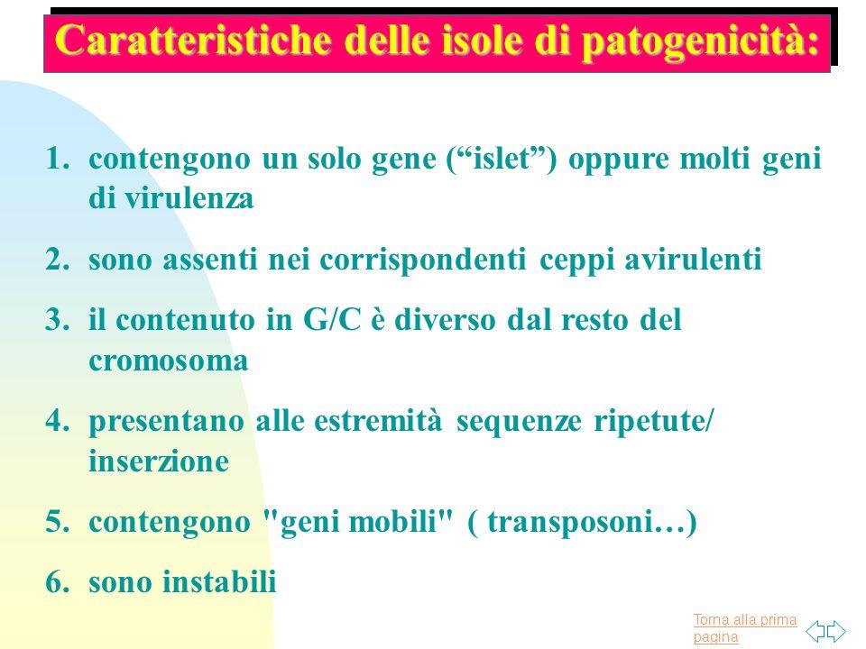 Caratteristiche delle isole di patogenicità: