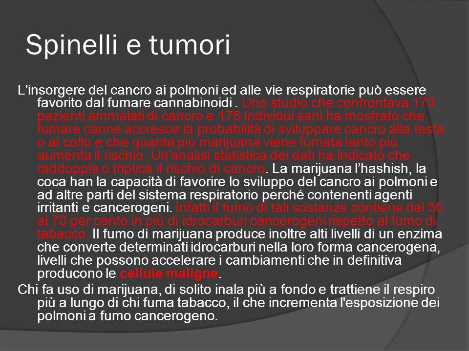 Spinelli e tumori