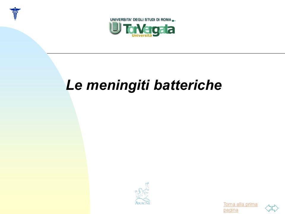 Le meningiti batteriche