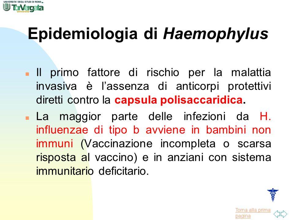 Epidemiologia di Haemophylus