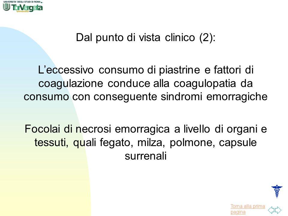 Dal punto di vista clinico (2):