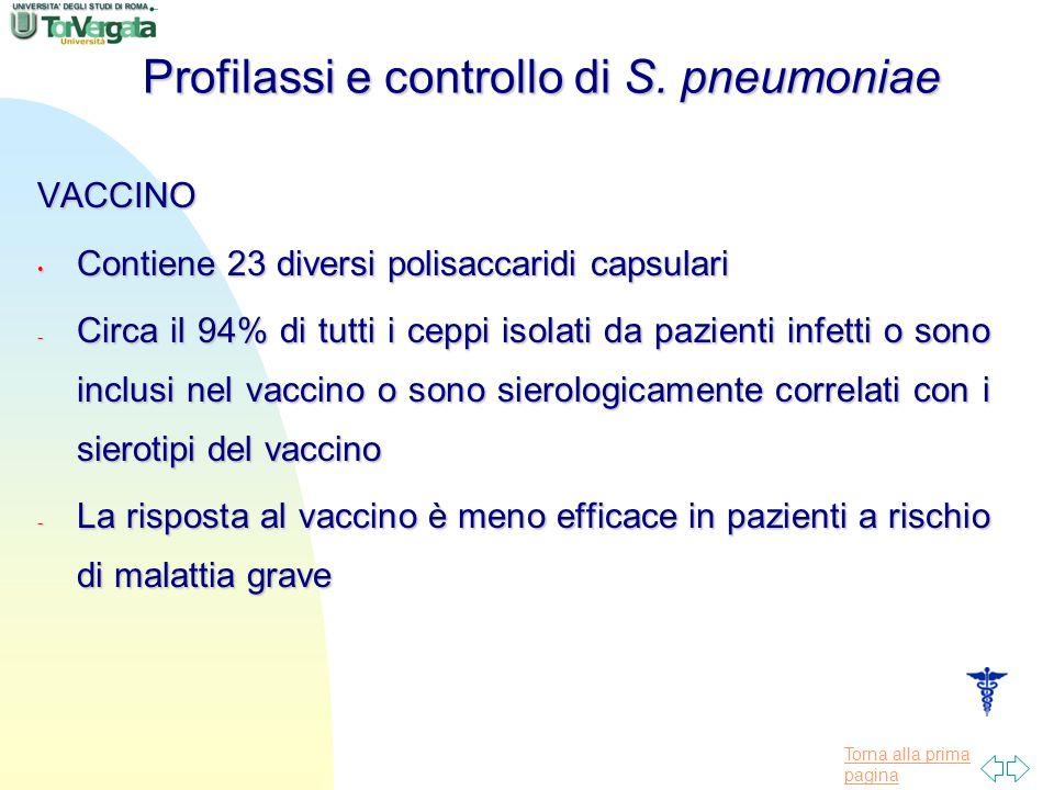 Profilassi e controllo di S. pneumoniae