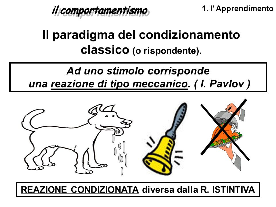 Il paradigma del condizionamento classico (o rispondente).