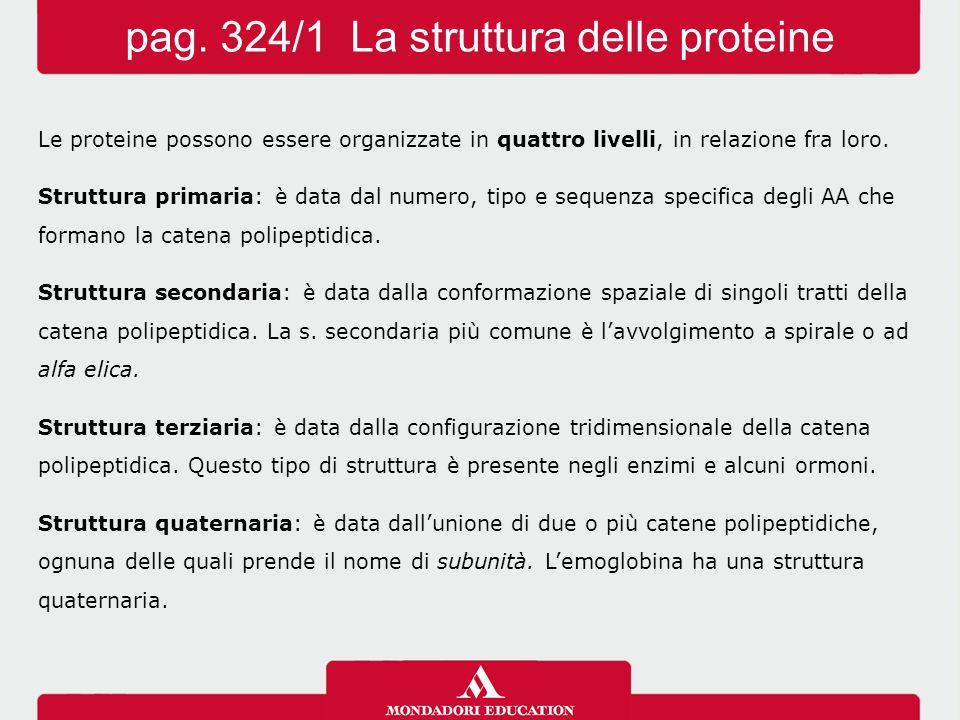 pag. 324/1 La struttura delle proteine