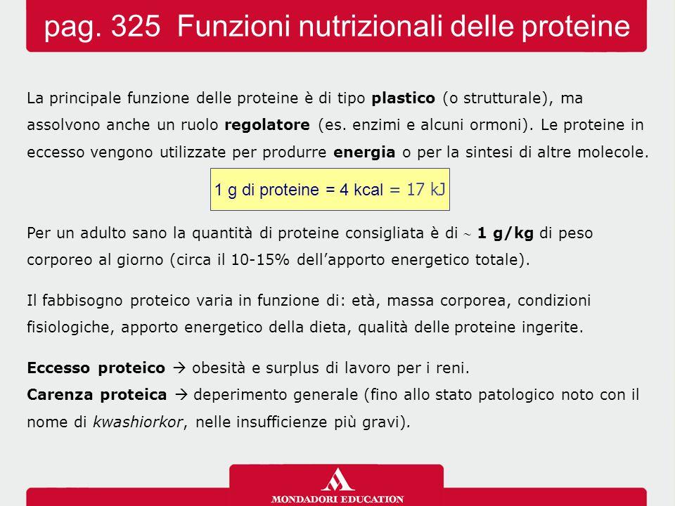 pag. 325 Funzioni nutrizionali delle proteine