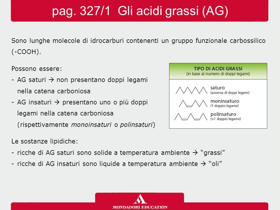 pag. 327/1 Gli acidi grassi (AG)