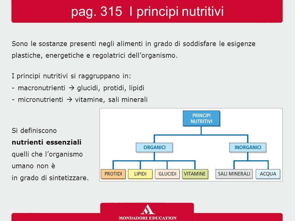 pag. 315 I principi nutritivi