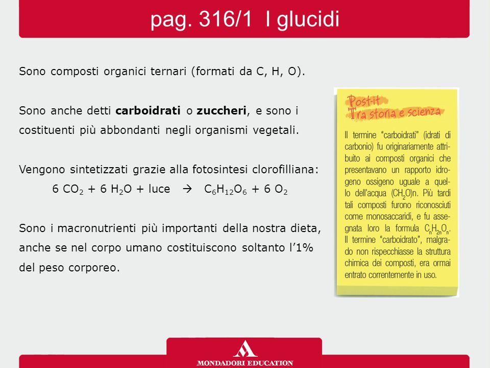 pag. 316/1 I glucidi Sono composti organici ternari (formati da C, H, O). Sono anche detti carboidrati o zuccheri, e sono i.