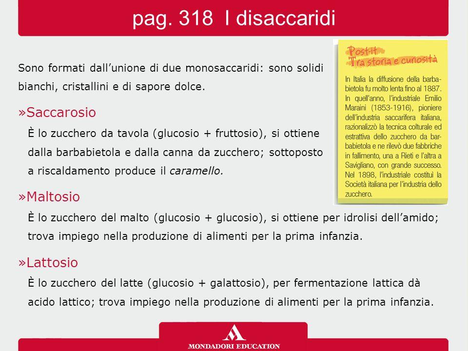 pag. 318 I disaccaridi Saccarosio Maltosio Lattosio