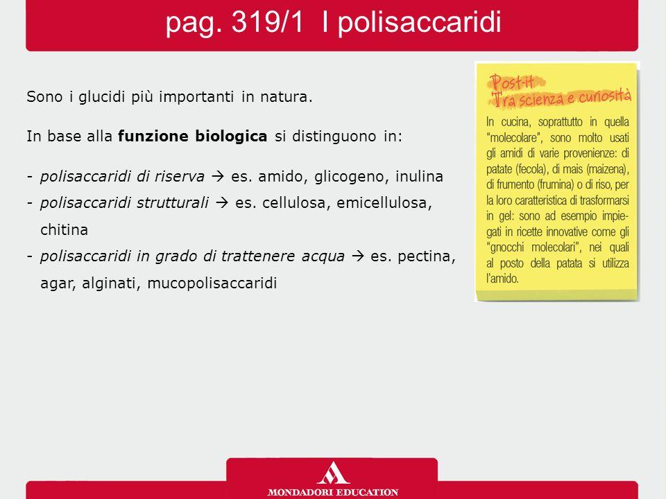 pag. 319/1 I polisaccaridi Sono i glucidi più importanti in natura.