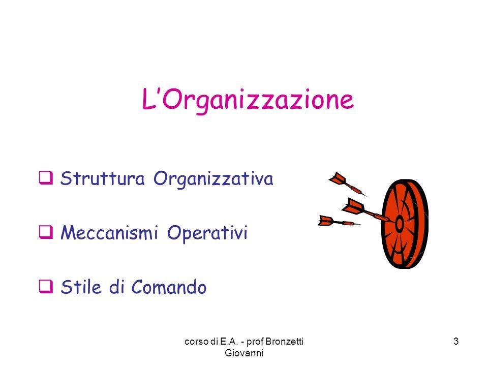 Struttura Organizzativa Meccanismi Operativi Stile di Comando