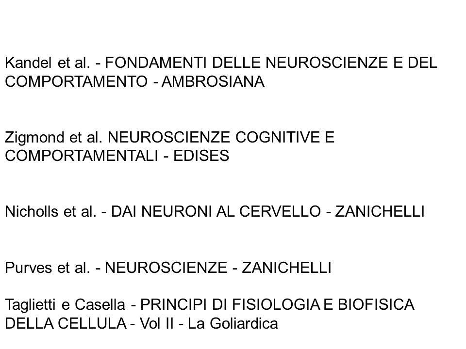 Kandel et al. - FONDAMENTI DELLE NEUROSCIENZE E DEL